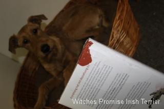2011-10-10-begum-braucht-klare-grenzen-003-640x427